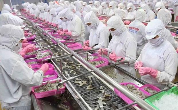Numerosas empresas chinas interesadas en productos acuaticos vietnamitas hinh anh 1