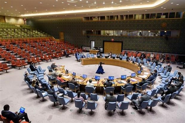 Llama Vietnam a intensificar respaldo al Libano en solucion de crisis hinh anh 1