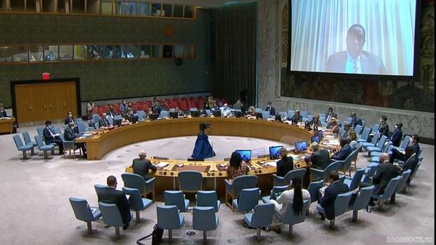 Vietnam expresa preocupaciones sobre violencia contra civiles en Somalia hinh anh 1