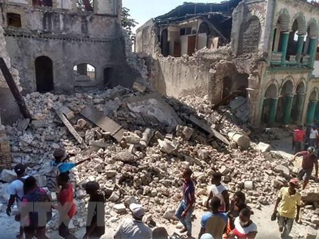 No se han reportado vietnamitas entre victimas por terremoto en Haiti hinh anh 1