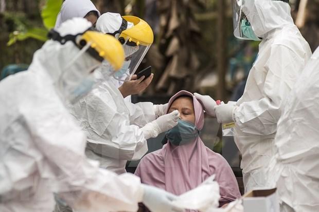 Indonesia mantendra el suministro y precio de medicamentos contra el COVID-19 hinh anh 1