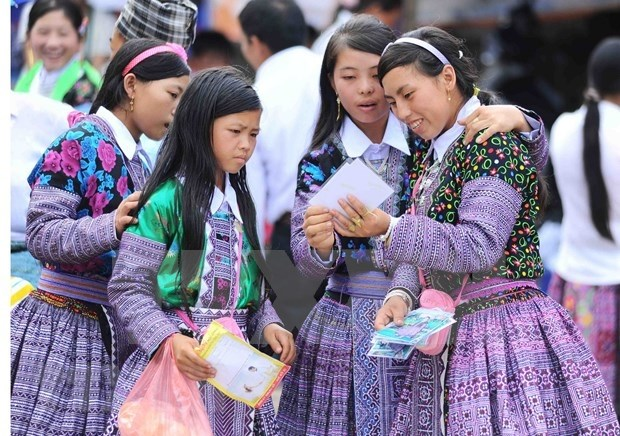 Suspenden en Vietnam Festival Cultural de Nacionalidades de Moc Chau hinh anh 1