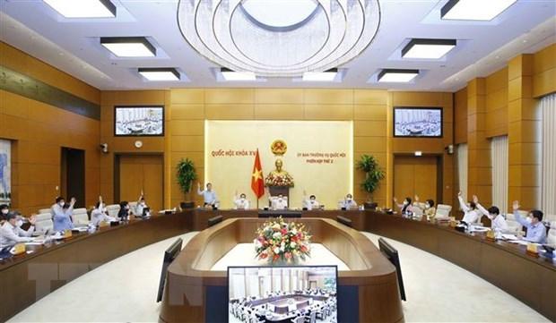 Comite Permanente del Parlamento de Vietnam debate asignaciones presupuestarias hinh anh 1