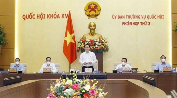 Revisa Comite Permanente del Parlamento de Vietnam importantes trabajos legislativos hinh anh 1