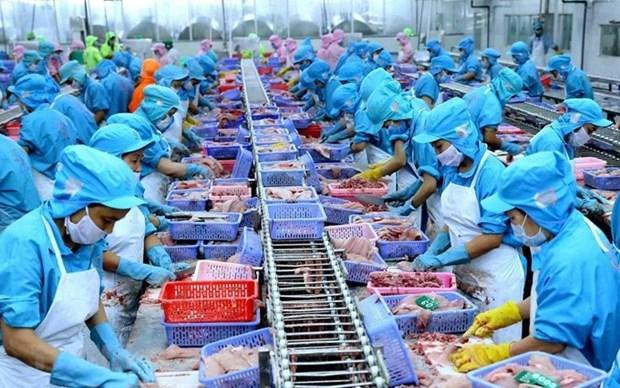 Vietnam por convertirse en centro mundial de procesamiento de mariscos hinh anh 1