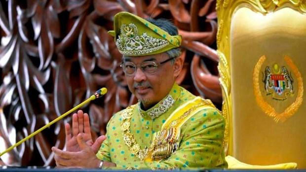 Rey de Malasia exhorta consenso entre partidos politicos hinh anh 1