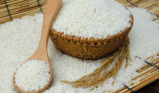 Vietnam representa el 87 por ciento de las importaciones totales de arroz de Filipinas hinh anh 1