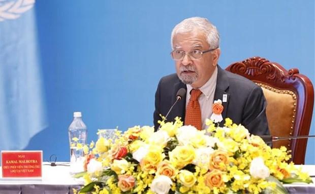 Vietnam concede distincion a coordinador residente de la ONU hinh anh 1