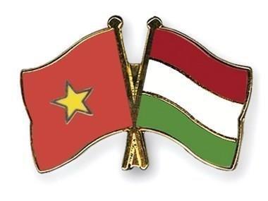 Vietnam felicita a Hungria por el Dia de fundacion de su Estado hinh anh 1