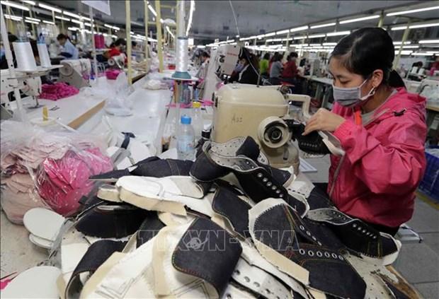 Robustecen Vietnam y Argentina nexos en comercio hinh anh 1