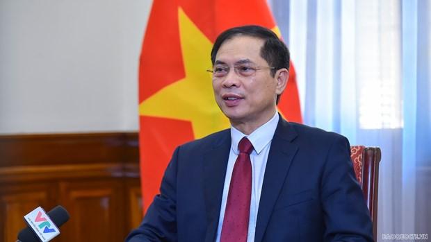 Canciller vietnamita destaca conclusion del Buro Politico sobre labores relativas a los coterraneos en ultramar hinh anh 1