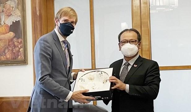 Vietnam y Republica Checa impulsan cooperacion en salud hinh anh 1