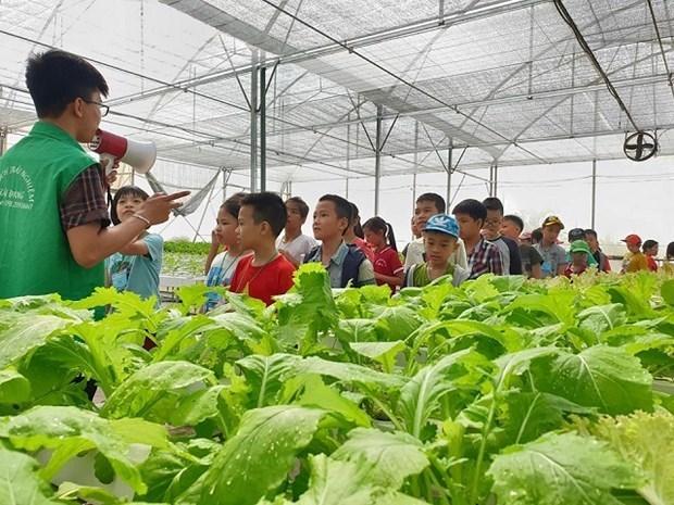 Hanoi se esmera en desarrollar turismo agricola hinh anh 1
