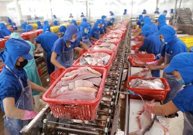 Ventas de productos acuicolas de Vietnam disminuyen debido al COVID-19 hinh anh 1