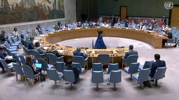 Vietnam exhorta al apoyo internacional para ayudar a Etiopia a superar la crisis hinh anh 1