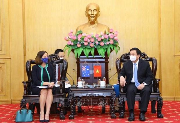Fortalecen capacitacion y desarrollo de capacidad para la futura generacion de lideres vietnamitas hinh anh 2