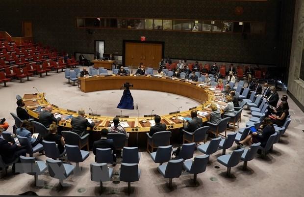 Aplaude Vietnam logros del Consejo de Seguridad en agosto hinh anh 1