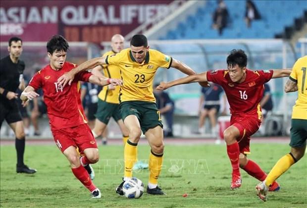 Vietnam pide a FIFA revisar calidad del trabajo arbitral en eliminatorias mundialistas hinh anh 1
