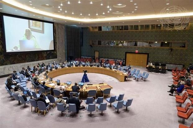 Vietnam subraya papel de transicion de operaciones de mantenimiento de paz hinh anh 1