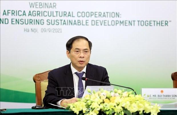 Vietnam robustece cooperacion en agricultura con Africa hinh anh 1