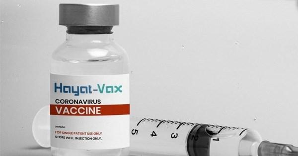 Hayat-Vax, septima vacuna contra el COVID-19 aprobada en Vietnam hinh anh 1