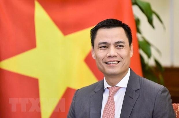 Proxima visita a Cuba del presidente de Vietnam afirma solidaridad con la mayor de las Antillas hinh anh 1