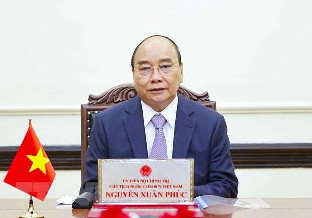 Presidentes de Vietnam y Rusia debaten medidas para agilizar lazos binacionales hinh anh 1