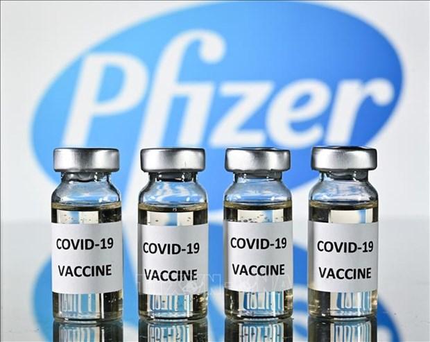 Aprueba Vietnam presupuesto para comprar 20 millones de dosis de vacuna Pfizer hinh anh 1