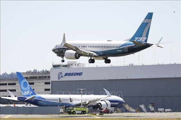Aviacion Civil de Vietnam propone permitir importacion de aviones Boeing 737 Max hinh anh 1