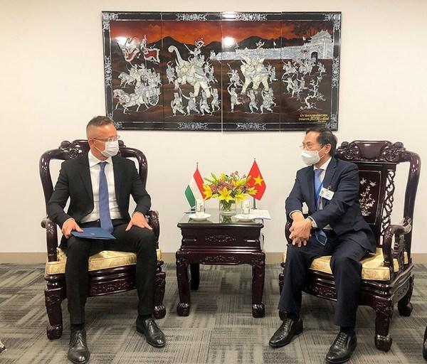 Canciller vietnamita cumple amplia agenda de encuentros en Nueva York hinh anh 4