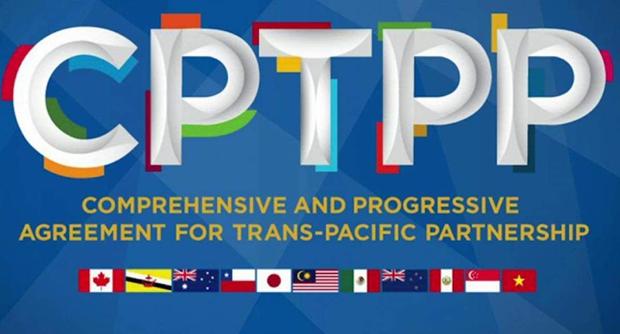 Vietnam dispuesto a compartir experiencias en adhesion al CPTPP hinh anh 2