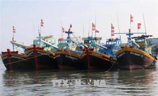 Provincia vietnamita aplica sanciones estrictas contra casos de pesca ilegal hinh anh 1