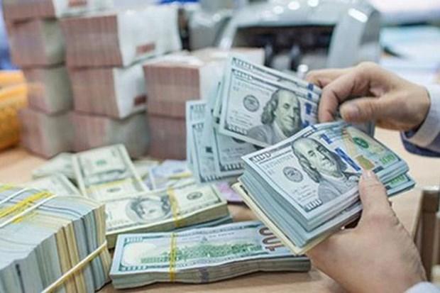Crecen 32,4 por ciento las inversiones vietnamitas en el extranjero hinh anh 1