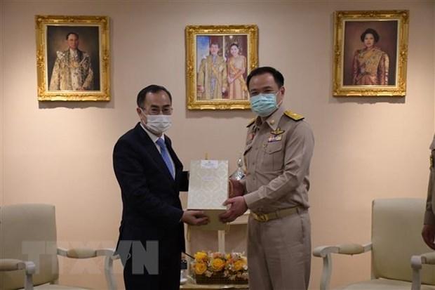 Vietnam y Tailandia fortalecen cooperacion en salud hinh anh 1