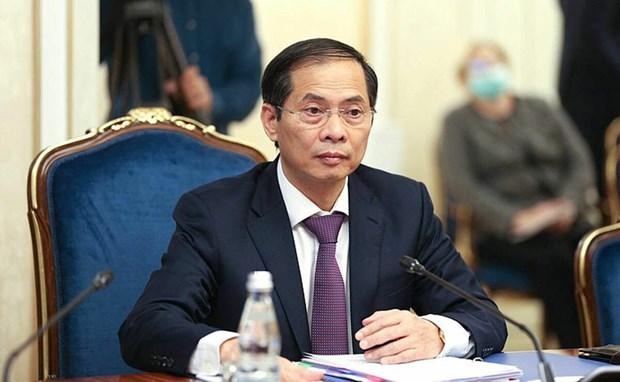Vietnam es socio importante de Rusia en Asia-Pacifico, afirma alto funcionario hinh anh 2