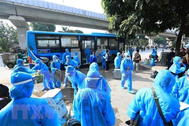 Vietnam: Mas de 23 mil pacientes recuperados del COVID-19 hinh anh 1