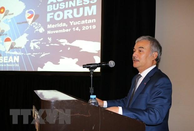 Promueven paises de ASEAN en Mexico comercio con estado de Yucatan hinh anh 2