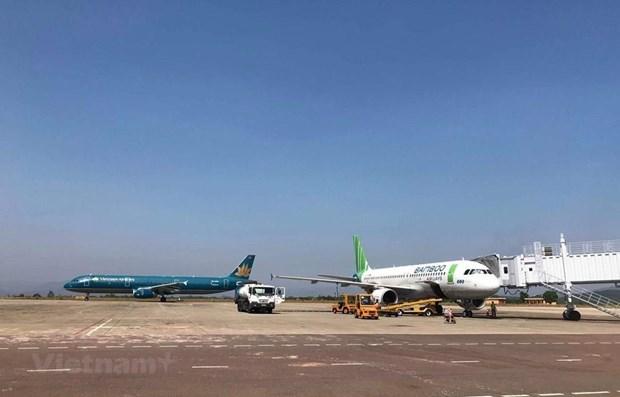 Enfrentan aerolineas vietnamitas desafios para abrir vuelos directos a Estados Unidos  hinh anh 1