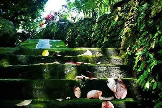 Desarrollan ecoturismo en la antigua aldea de Loc Yen hinh anh 1