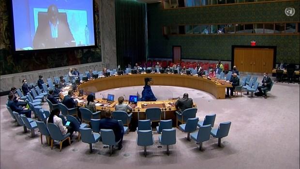 Vietnam mantendra contribucion a actividades de la ONU en Sudan del Sur hinh anh 2