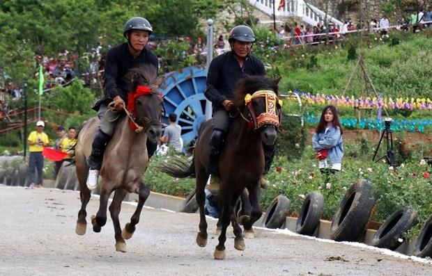 Preservan las caracteristicas unicas de la carrera de caballos Bac Ha hinh anh 1