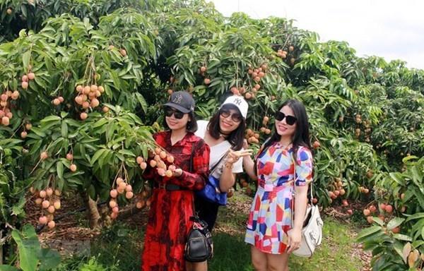 Bac Giang se esfuerza por desarrollar el turismo comunitario hinh anh 2