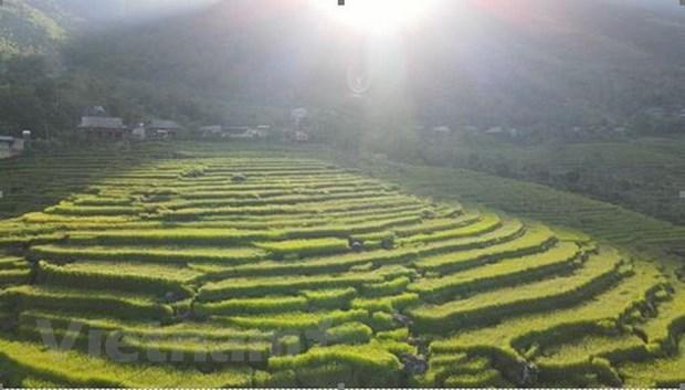 Descubren la reserva natural de Pu Luong en provincia de Thanh Hoa hinh anh 1