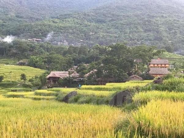 Descubren la reserva natural de Pu Luong en provincia de Thanh Hoa hinh anh 2