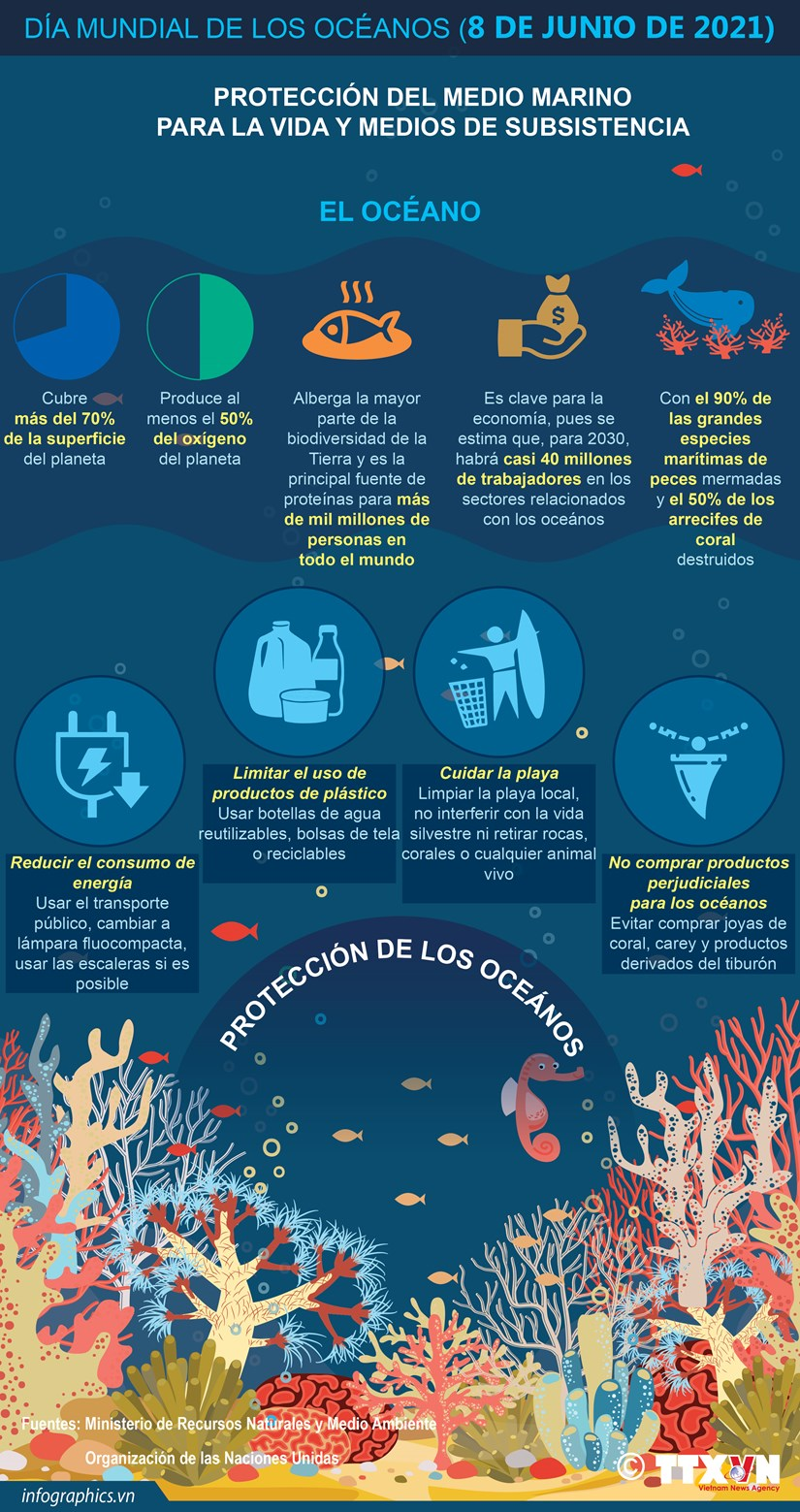 Dia Mundial de los Oceanos hinh anh 1