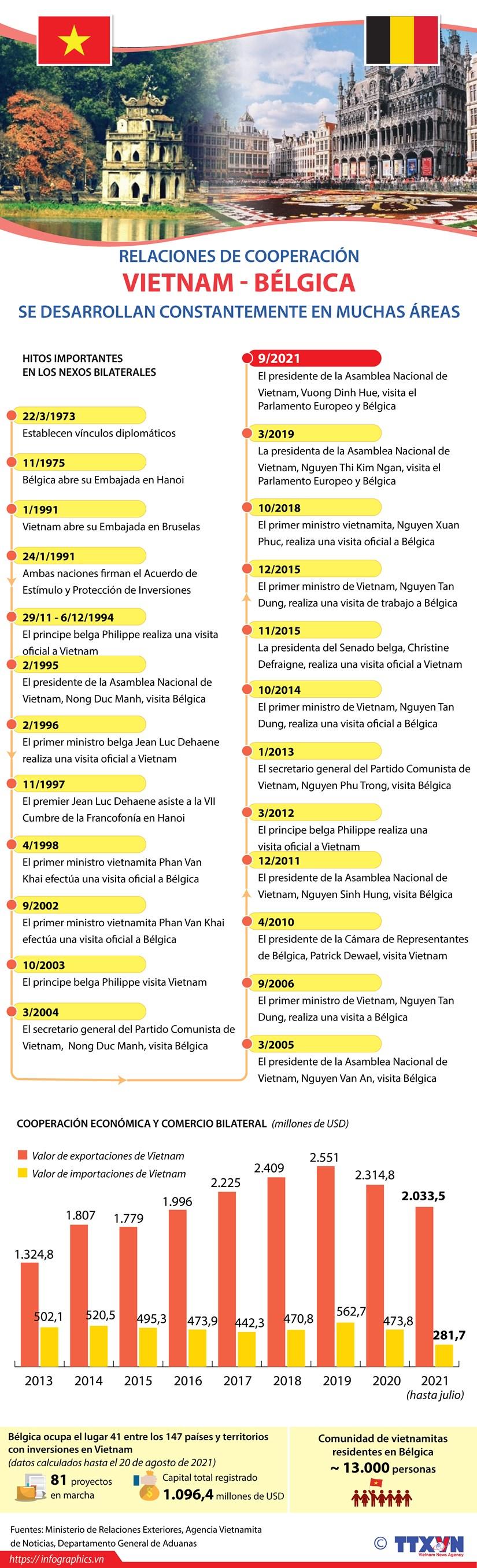 Relaciones Vietnam-Belgica se desarrollan constantemente hinh anh 1