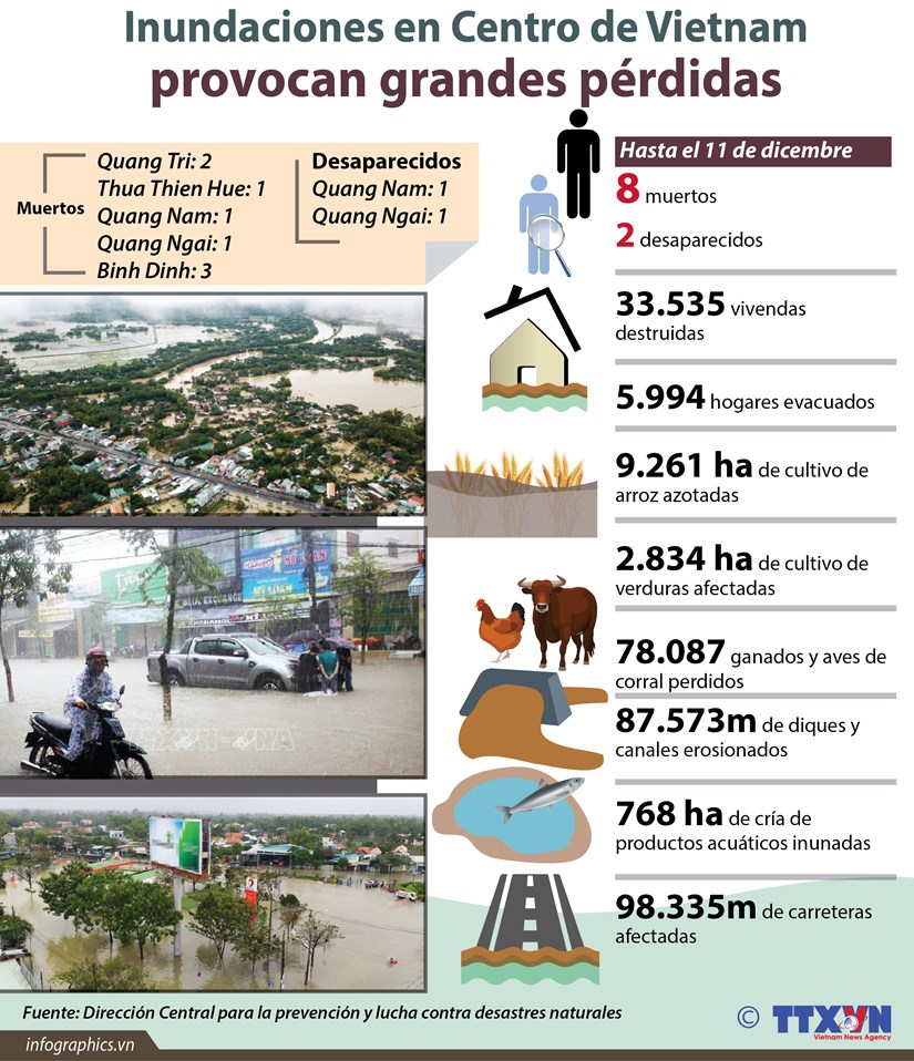 [Infografia] Inundaciones provocan grandes perdidas en Centro de Vietnam hinh anh 1