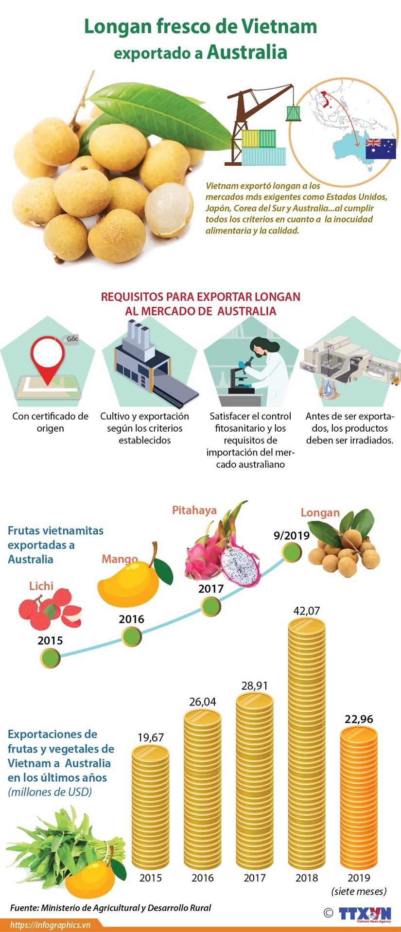 Vietnam exporta longan fresco a Australia hinh anh 1