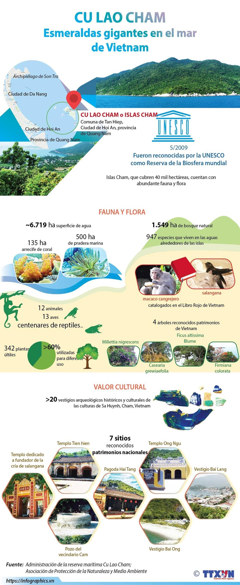 [Info] Cu Lao Cham, esmeraldas gigantes en el mar de Vietnam hinh anh 1