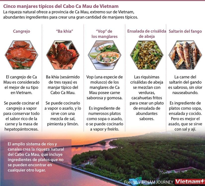 Cinco manjares tipicos del Cabo Ca Mau de Vietnam hinh anh 1